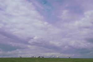 Big Sky Country-1