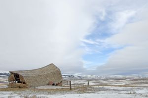 Tired Barn near Wilsall Montana